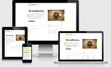 Responsive Webdesign Public Link
