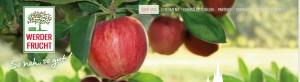 Werder Frucht mit neuer Website